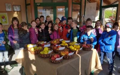 Ogled razstave Darovi jeseni – 3. razred
