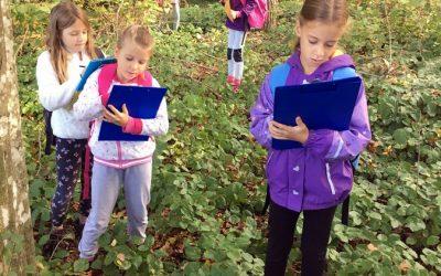 GOZD – naravoslovni dan v 3. razredu